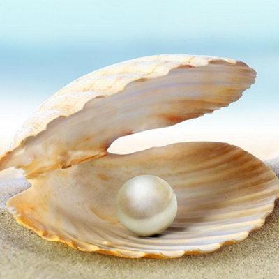 珍珠怎么辨别真假 辨别珍珠真假的方法盘点