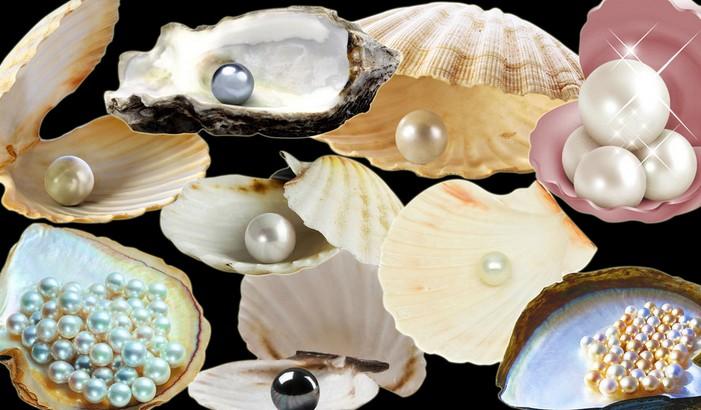 盘点十大珍珠品牌榜中榜一
