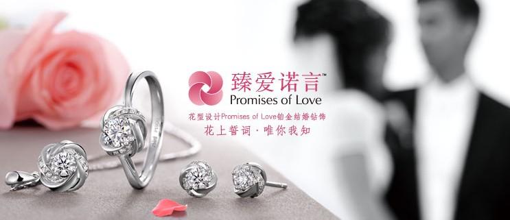 浅析钻石小鸟品牌发展历程二