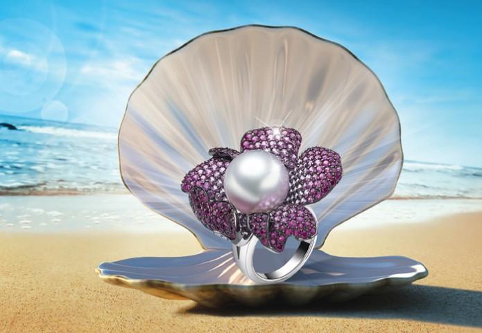 贝壳如何保养