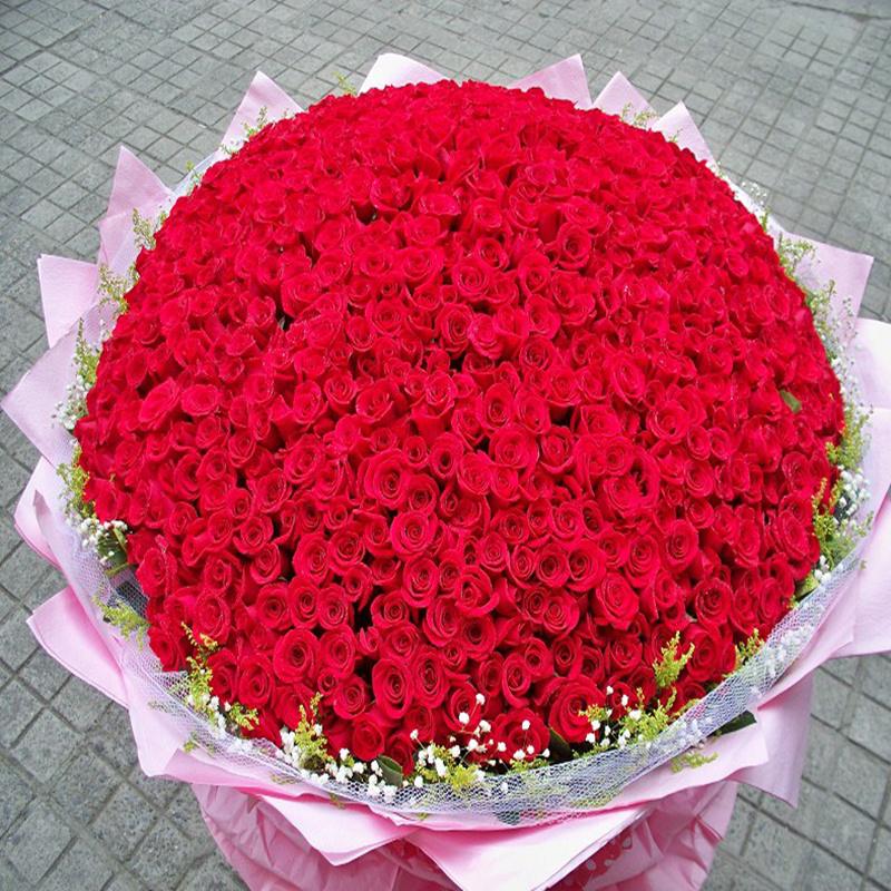 【送玫瑰花的含义】送玫瑰花数量的含义