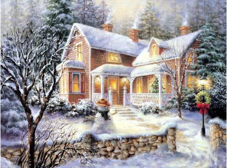 圣诞,圣诞节,圣诞节鲜花